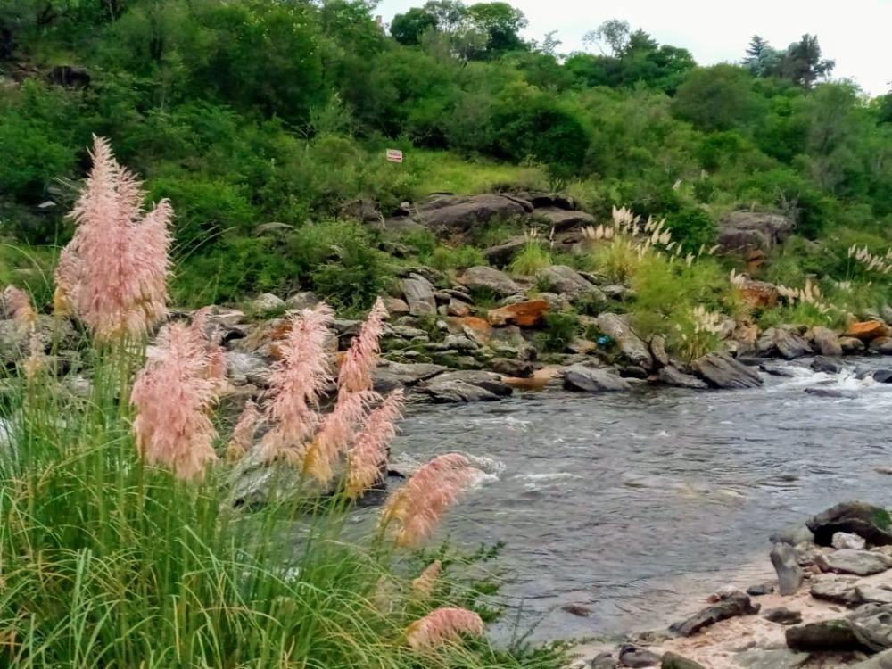 Gran lote de terreno con costa al Río San Antonio - Icho Cruz